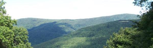 Börzsönyi tájkép